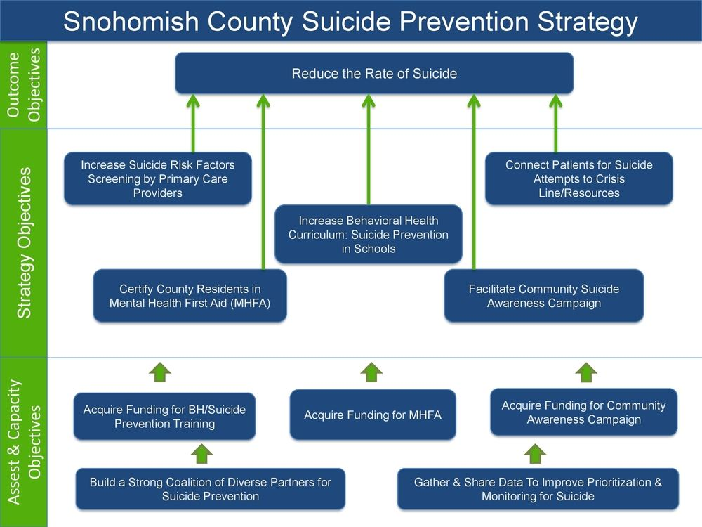Suicide Prevention Strategy Map