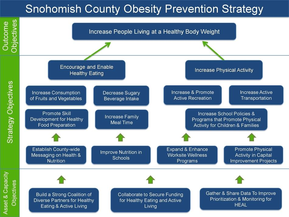 Obesity Prevention Strategy Map