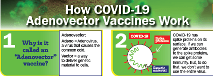 How Adenovector Vax Works Thumbnail